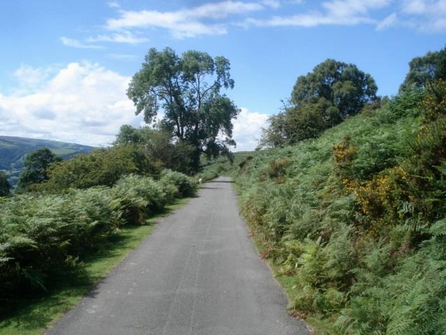 Lane above Trevor Uchaf - geograph.org.uk - 541842