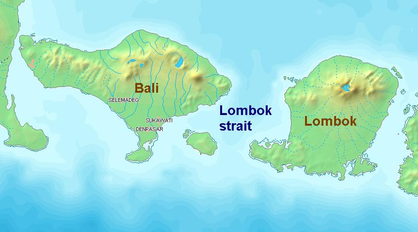 Image Result For Lombok Strait Wikipedia