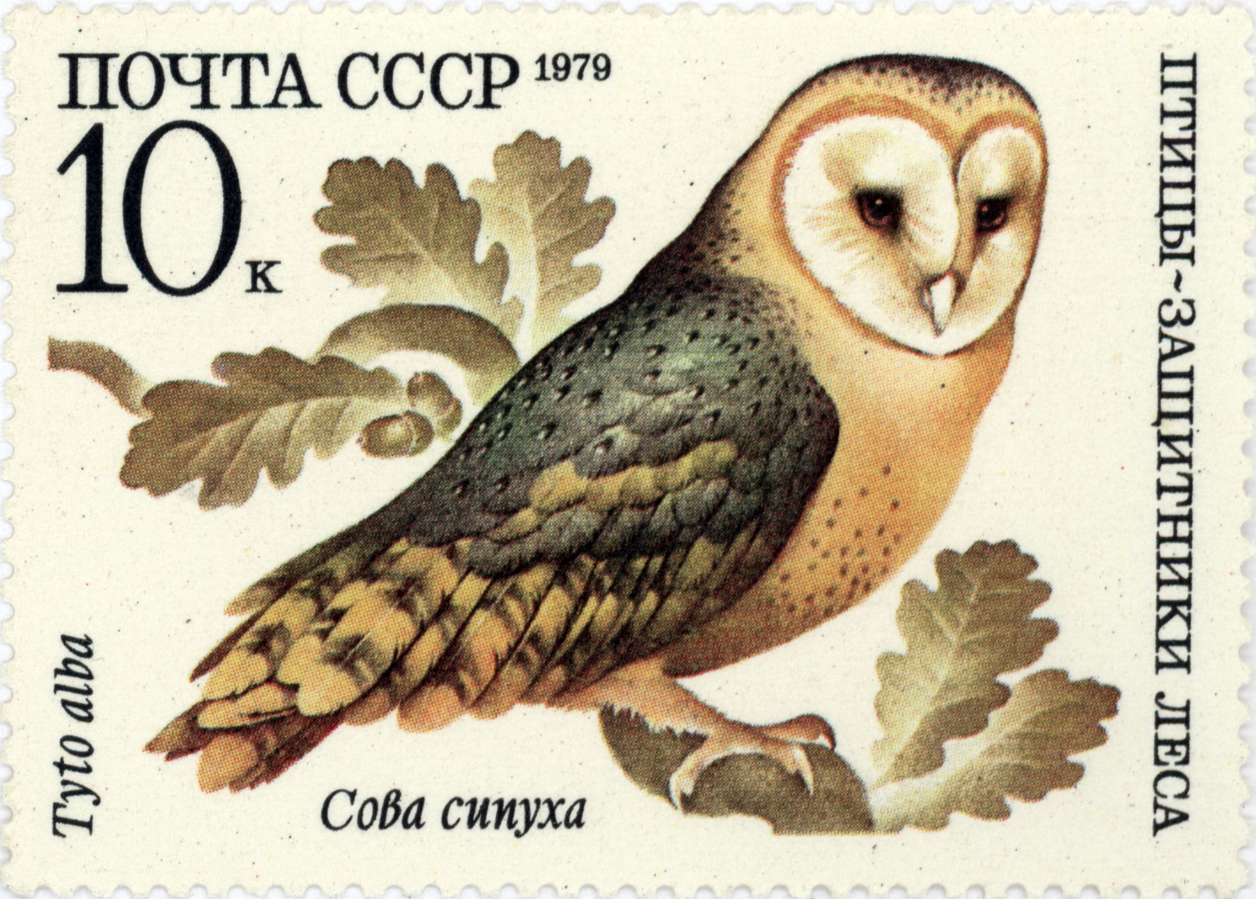 file owl birds defenders of the forest ussr stamp 1979 jpg