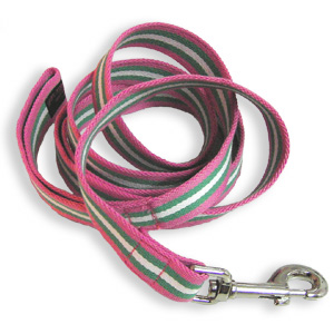 PPD-Leash-PinkGreenStripes