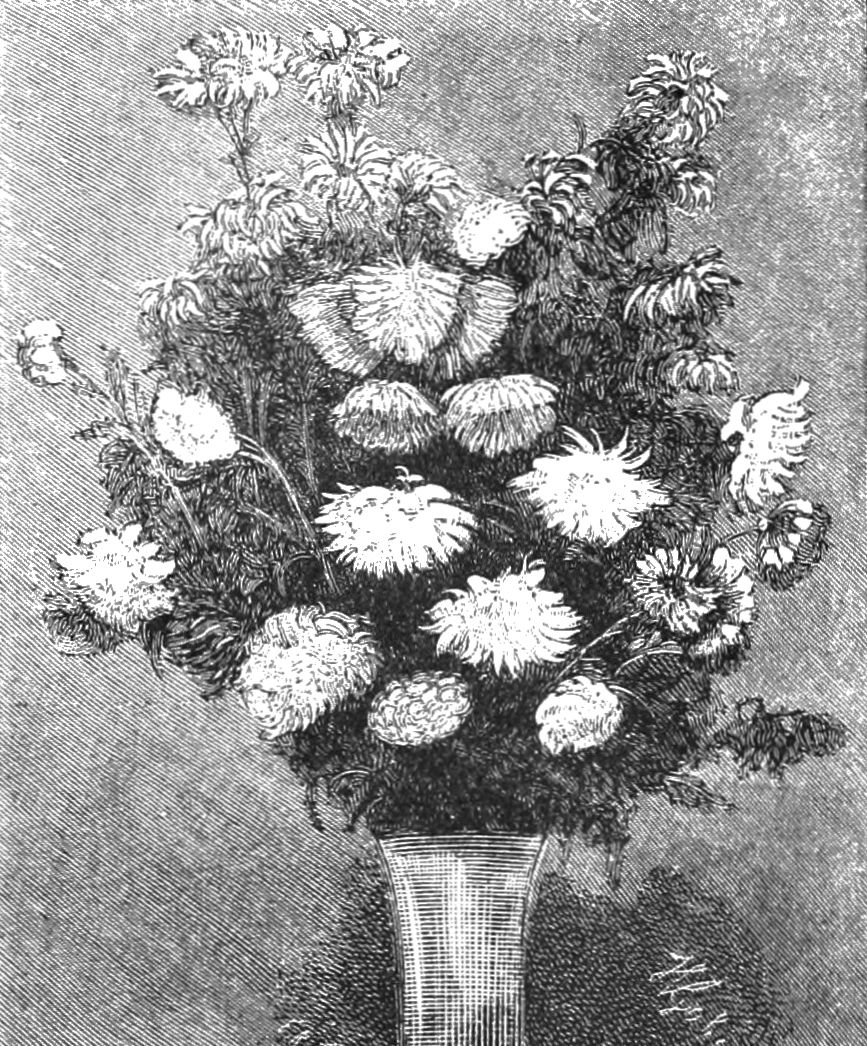 the femininity of the chrysanthemums Analysis of the chrysanthemums a feminine thing to do, which is why she continues to pursue gardening.