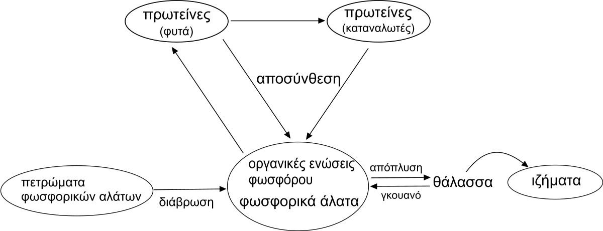 Filephosphorus Cycle El 2g Wikimedia Commons