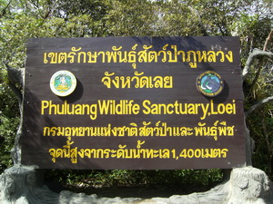 Phu Luang Wildlife Sanctuary.