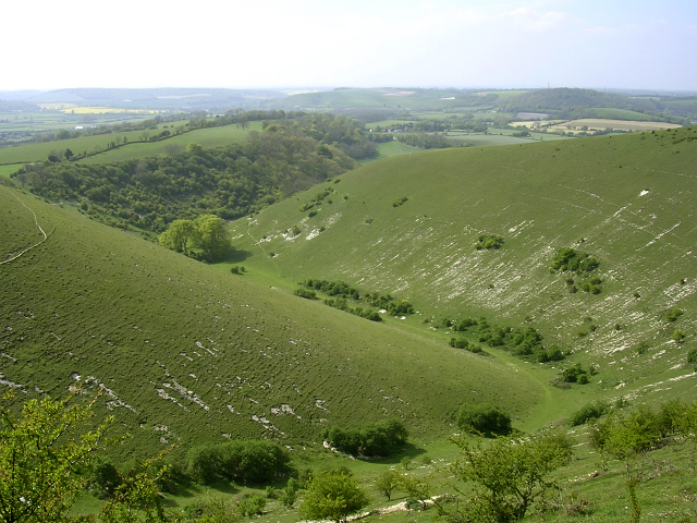 Ramsdean Down and Rake Bottom, Butser Hill - geograph.org.uk - 26186