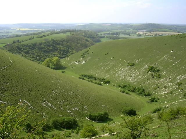 Ramsdean Down and Rake Bottom, Butser Hill - geograph.org.uk - 26186