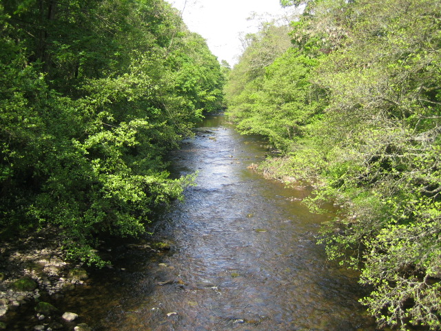 River Coquet, Harbottle - geograph.org.uk - 456200