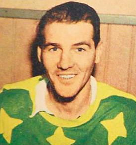 Rolf Pettersson (ice hockey) Swedish ice hockey player