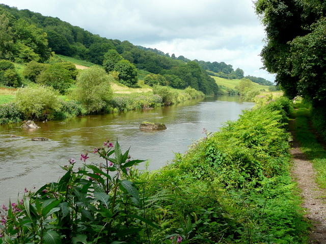 The beautiful Wye valley - geograph.org.uk - 1402615