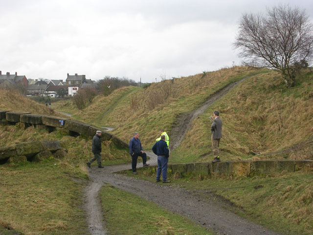 """""""The ravines"""" at New Kyo - geograph.org.uk - 129203"""