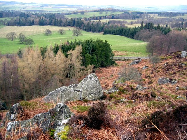 Above the forest at Hepburn Crags - geograph.org.uk - 1142205