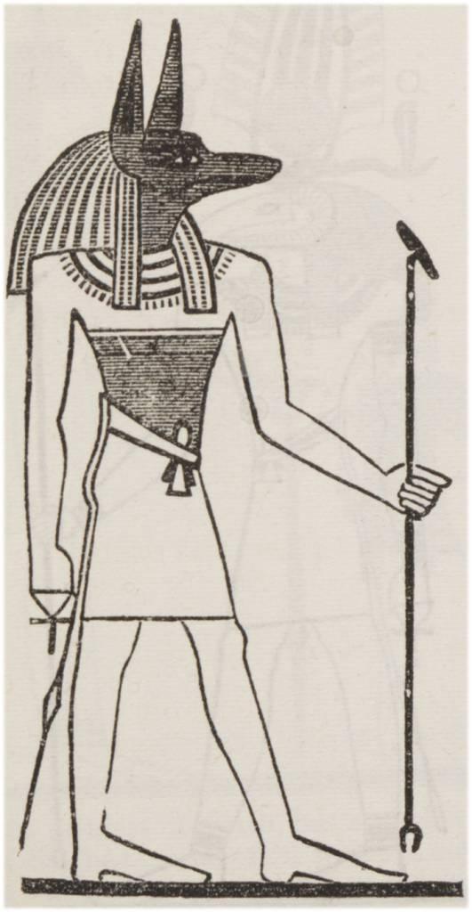 Картинки фараона в древнем египте анубис