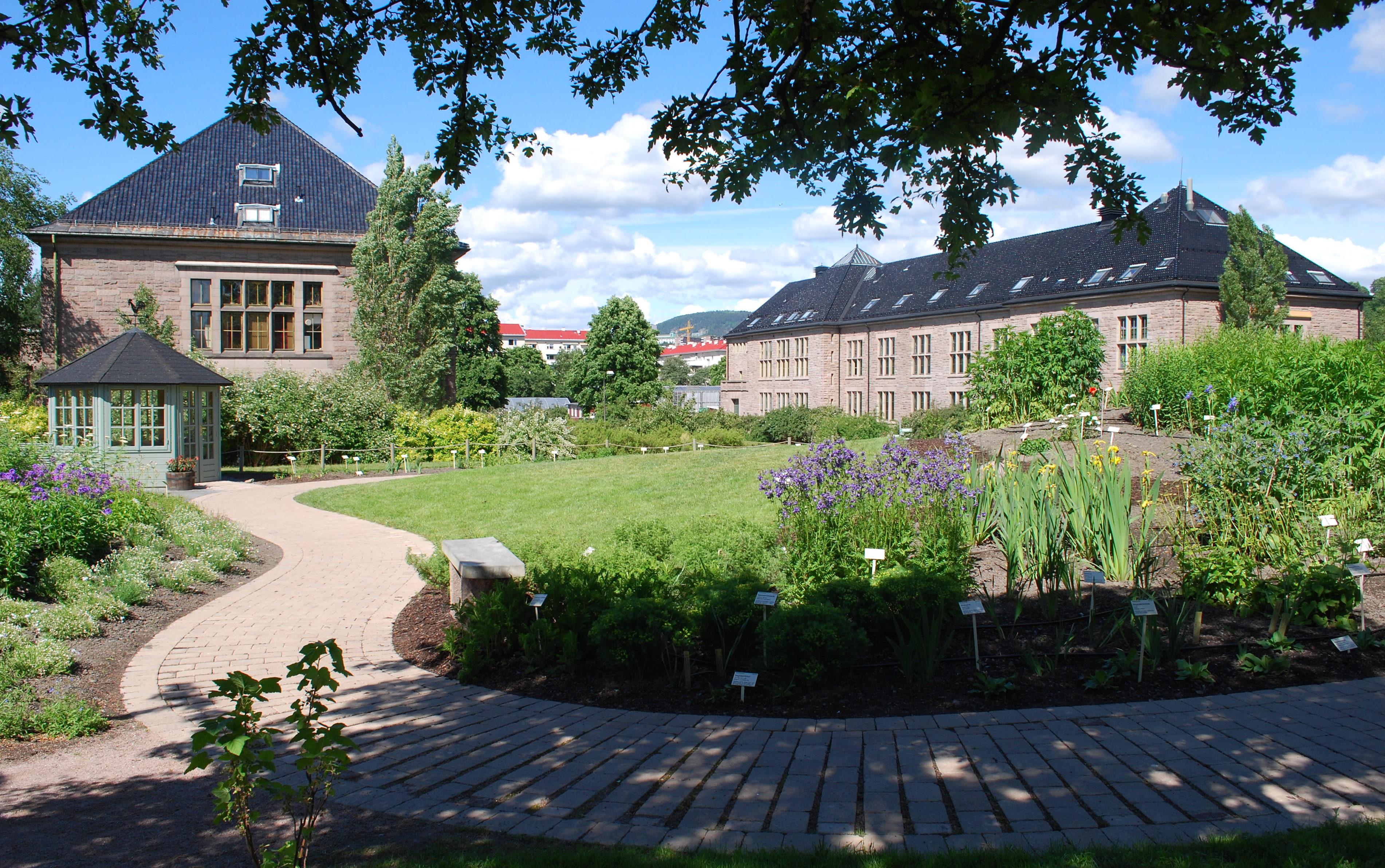 دانشگاه گیاه شناسی در باغ گیاه شناسی ترومسو