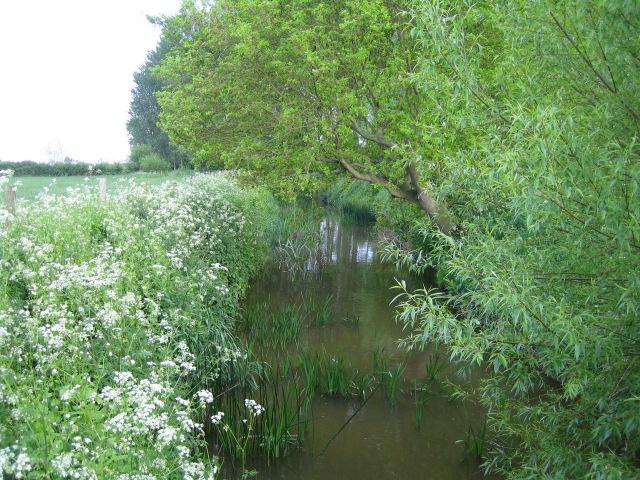 Claydon Brook near Addington 2 - geograph.org.uk - 491480