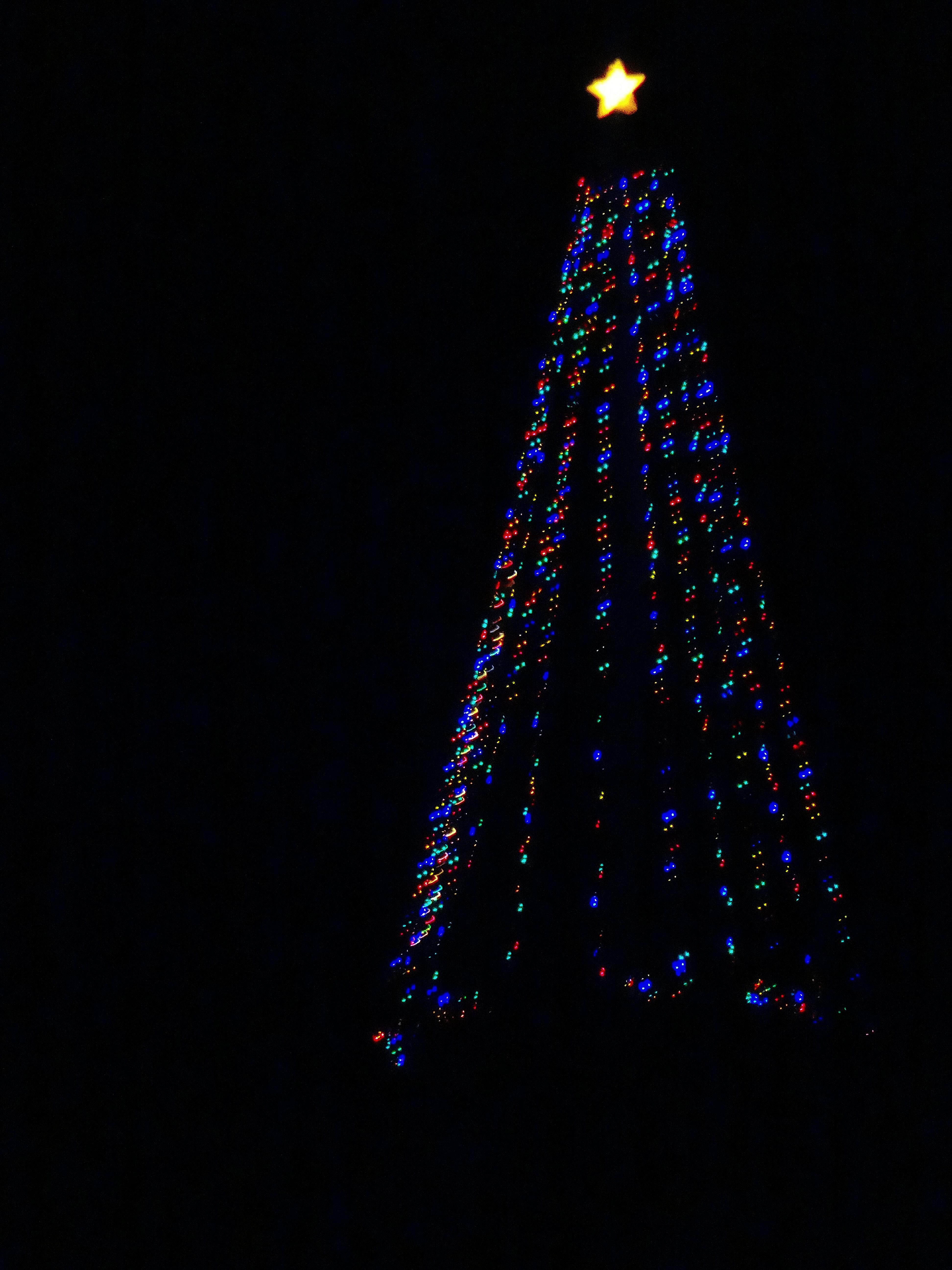 filecross plains hilltop christmas tree panoramio 2jpg - Hilltop Christmas