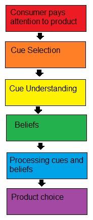 cue utilization theory