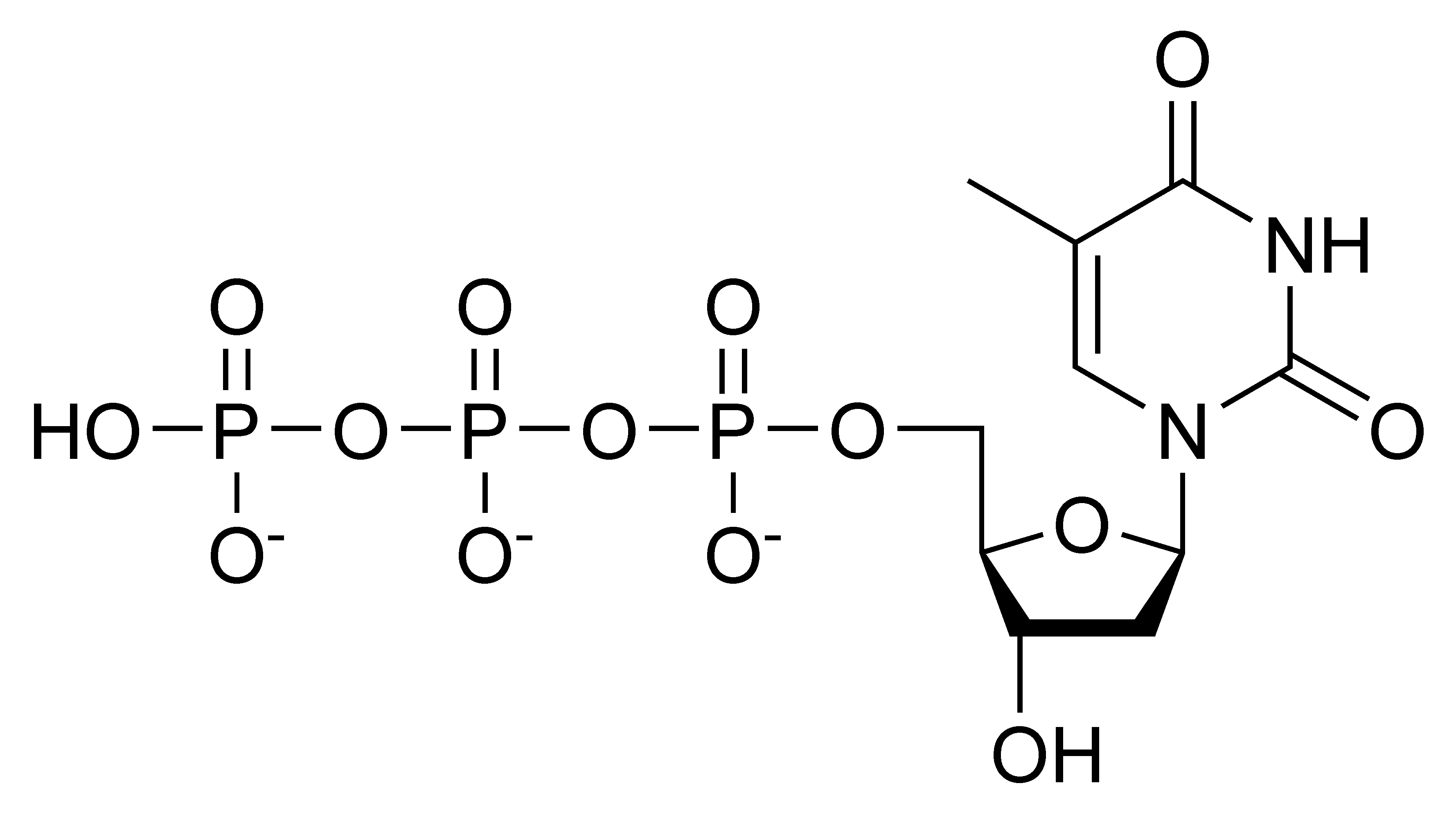 Chemical structure of deoxythymidine triphosphate