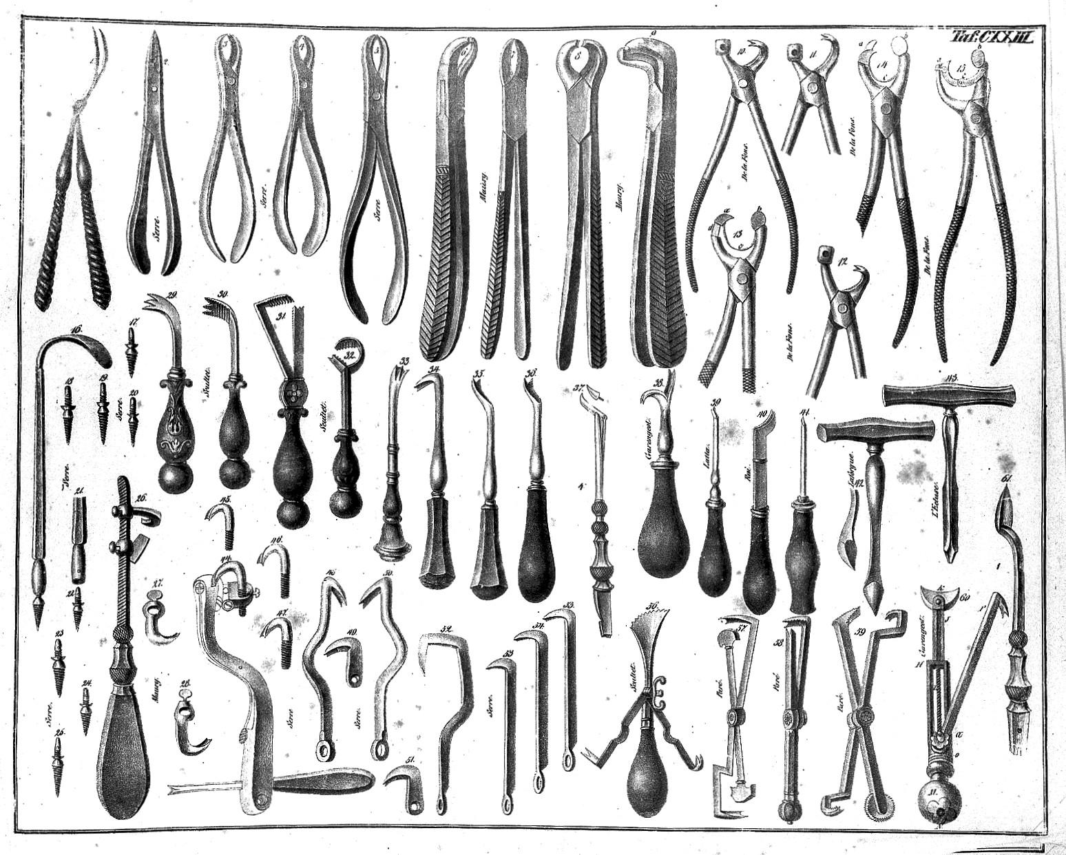 File:Dental instruments, Seerig Wellcome L0007190 jpg - Wikimedia