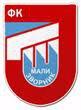 FK Jedinstvo MZV.jpg