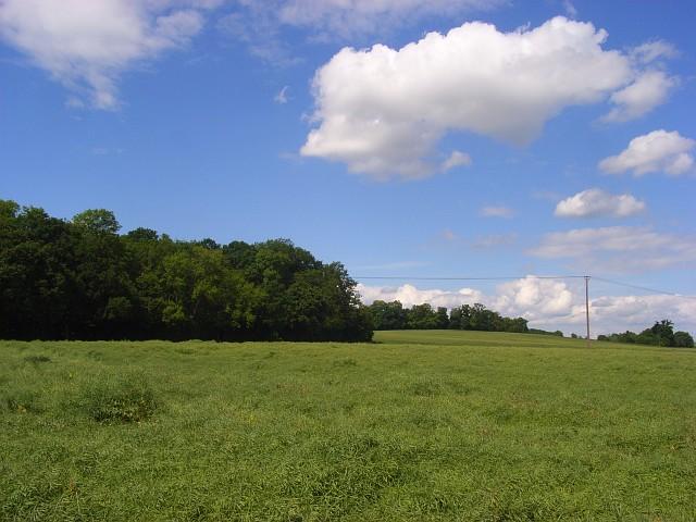 Farmland, Bisham - geograph.org.uk - 849669