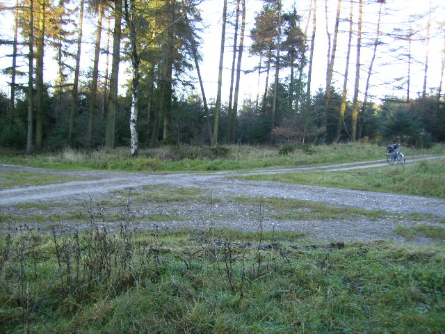 Fire Tower crossroads in Dalby Forest - geograph.org.uk - 290428