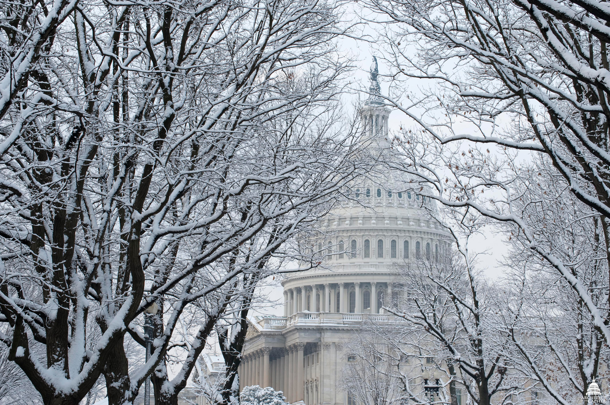 https://upload.wikimedia.org/wikipedia/commons/3/3f/Flickr_-_USCapitol_-_U.S._Capitol_Dome_in_Snow.jpg
