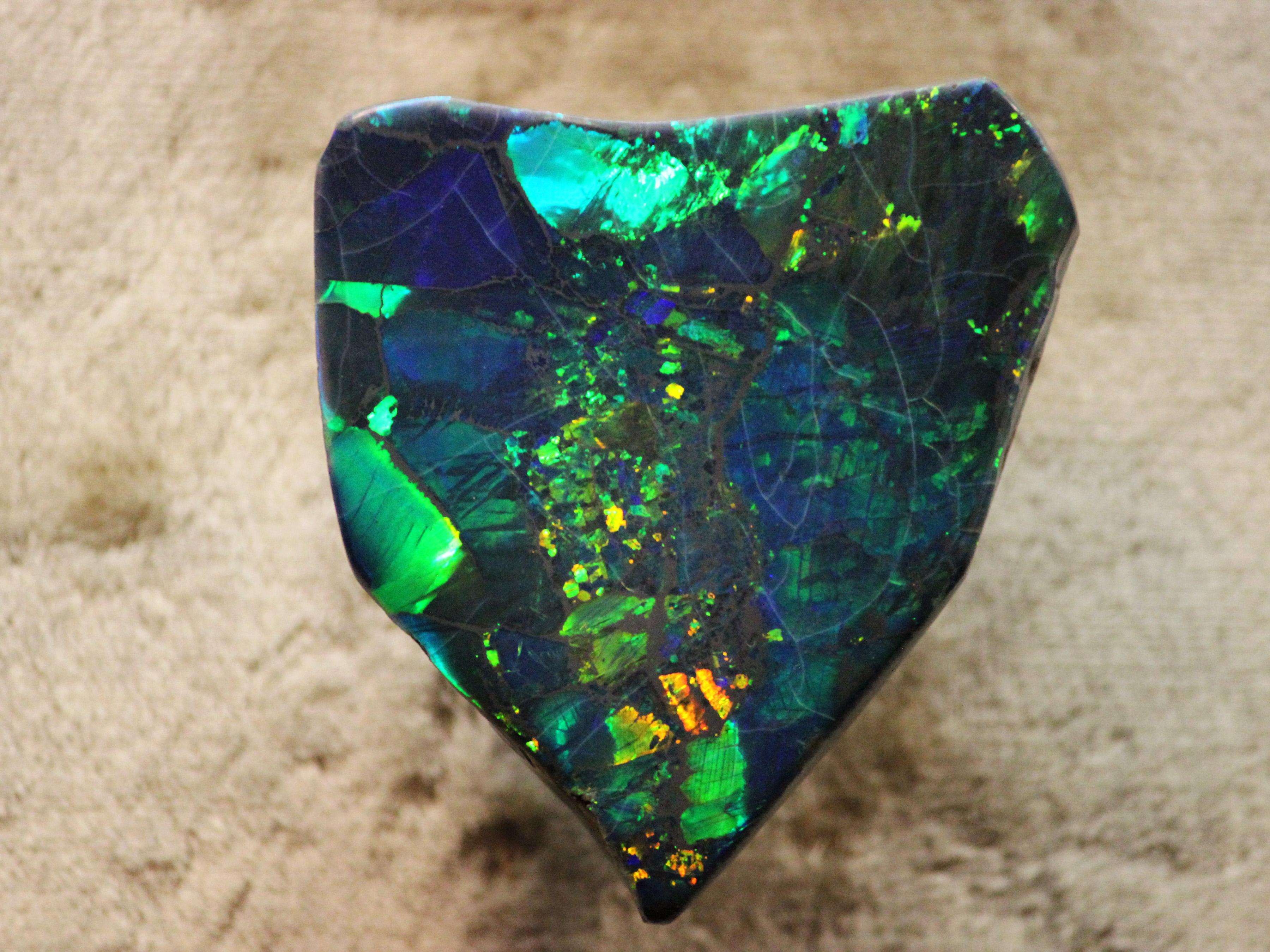Image result for opal