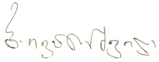 Ivanishvili signature (new).png