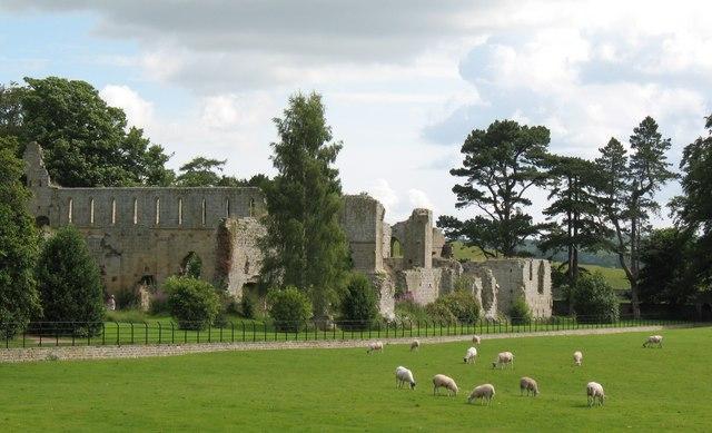 Jervaulx Abbey - geograph.org.uk - 1401425