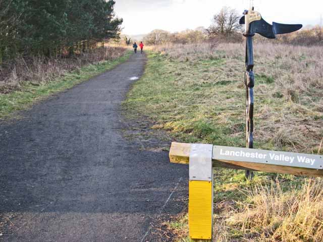 Lanchester Valley Path at Baxter Wood - geograph.org.uk - 340507