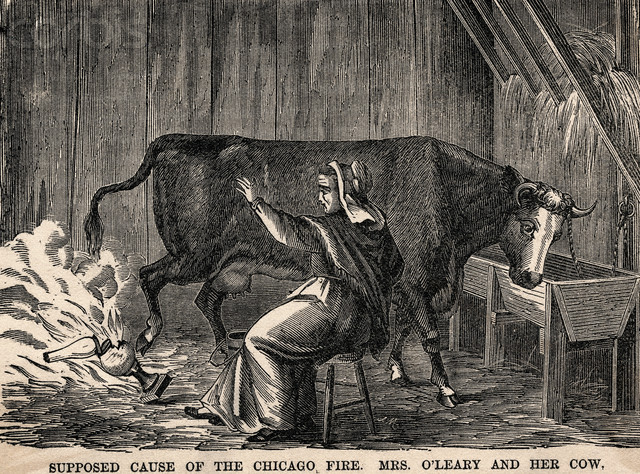 File:Mrs OLeary's cow.jpg
