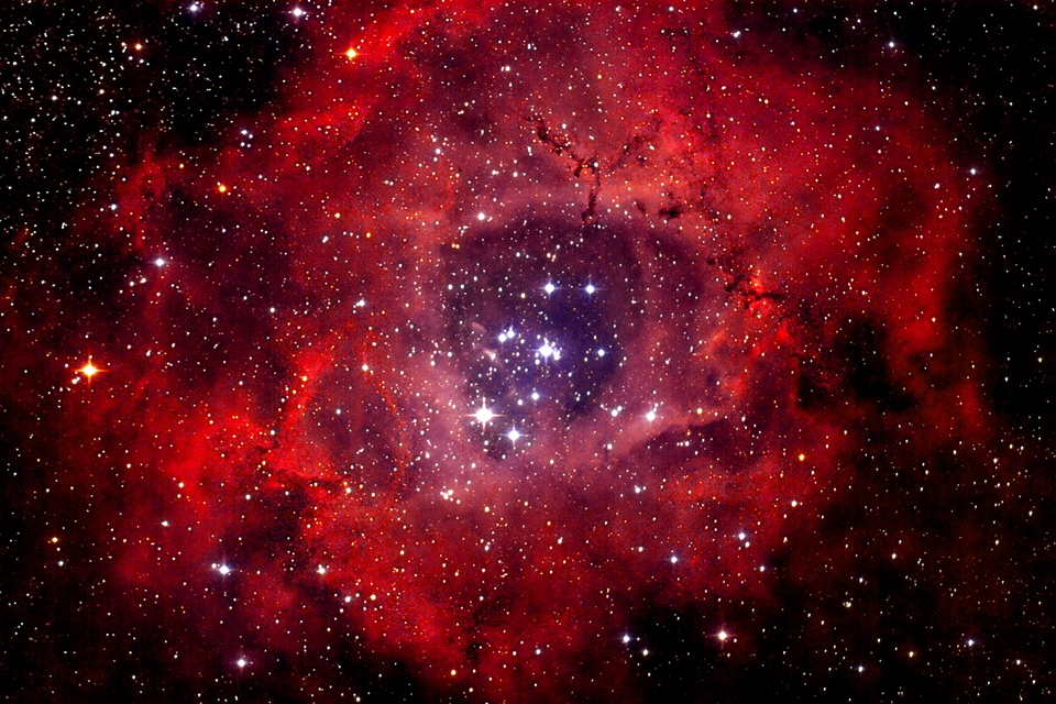 Image result for rosette nebula