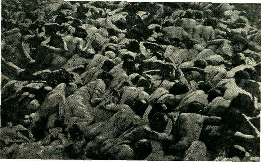 Znalezione obrazy dla zapytania Holocaust foto