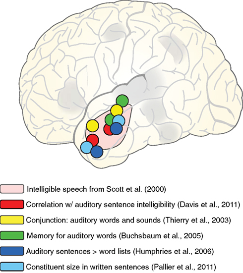 File:Peaks from various fMRI studies in left anterior lateral temporal cortex Fpsyg-03-00320-g008.jpg