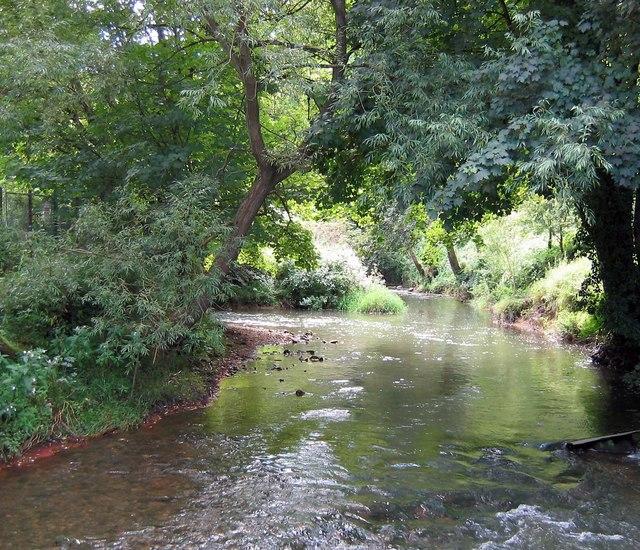 River Frome at Freshford Mill - geograph.org.uk - 537864