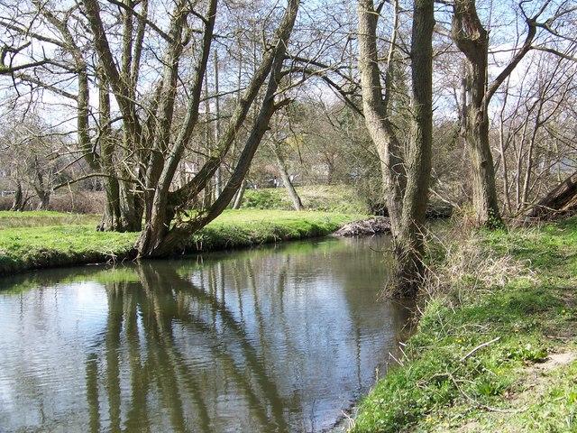 River Nadder, Tisbury - geograph.org.uk - 740773