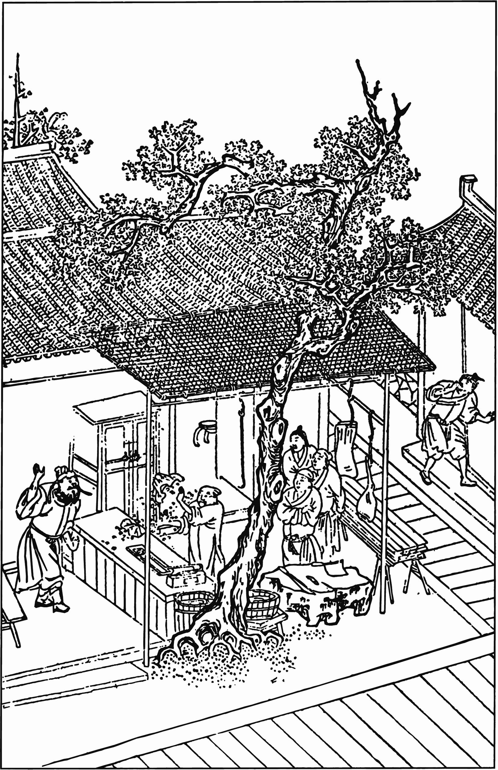 Illustration from a 15th century woodcut edition