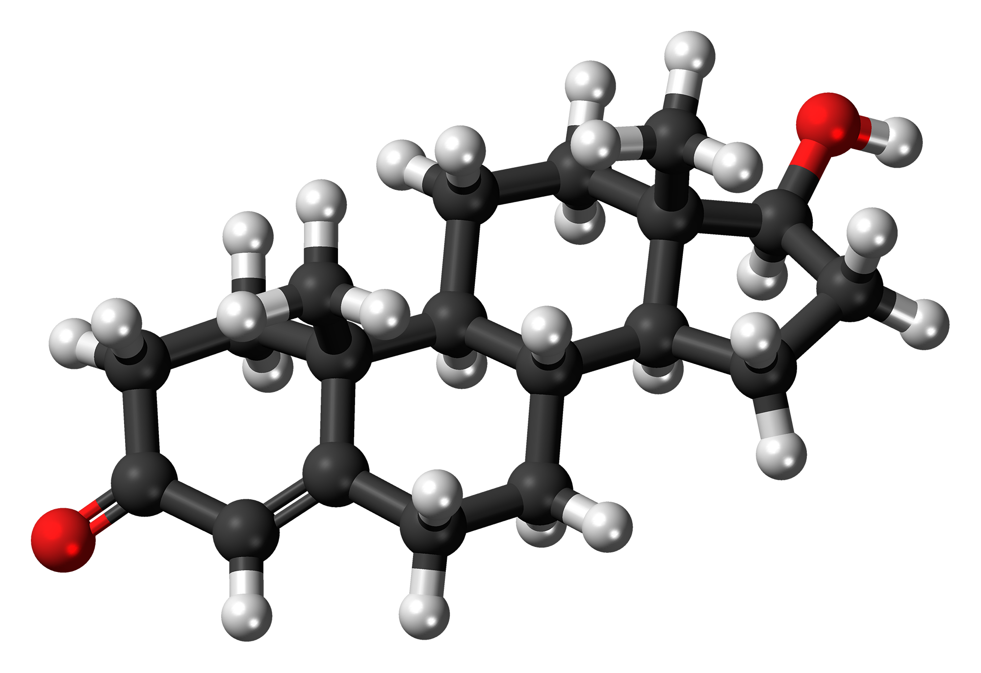 Testosterone (medication) - Wikiwand