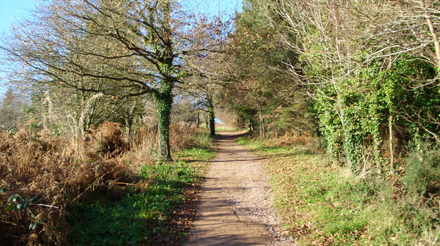 The footpath to May Hill - geograph.org.uk - 1072731