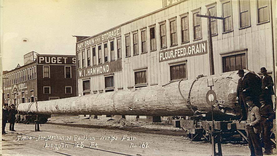 https://upload.wikimedia.org/wikipedia/commons/3/3f/Timber_for_the_construction_of_the_Mechanics_Pavilion_at_the_Chicago_World%27s_Columbian_Exposition%2C_Seattle%2C_Washington%2C_ca_1893_%28LAROCHE_166%29.jpeg