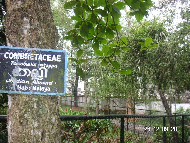 File:Trivandrum Zoo 33.jpg