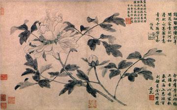 oriental ink print of peony flowers