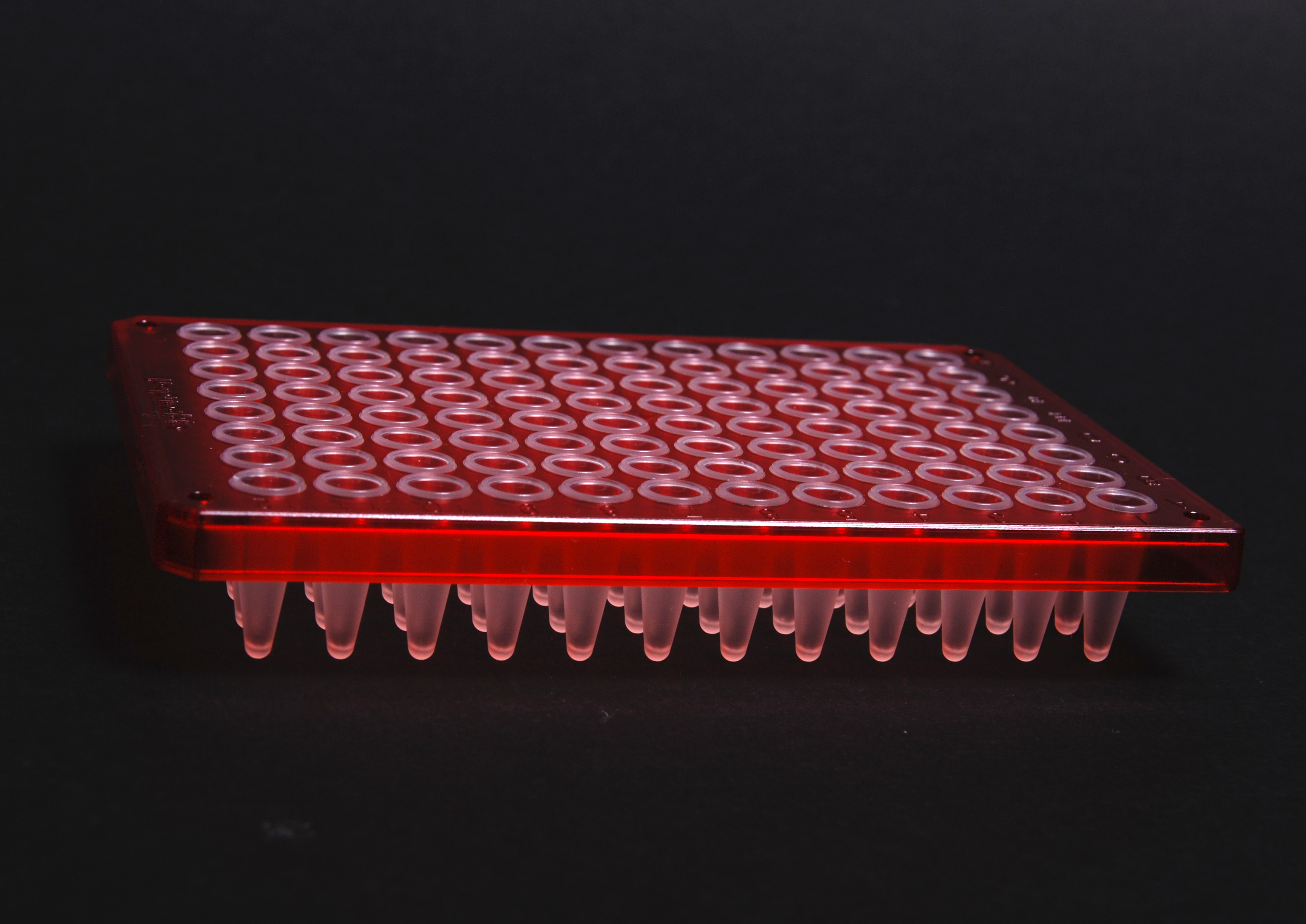 File:96 well PCR plate-07.jpg - Wikimedia Commons