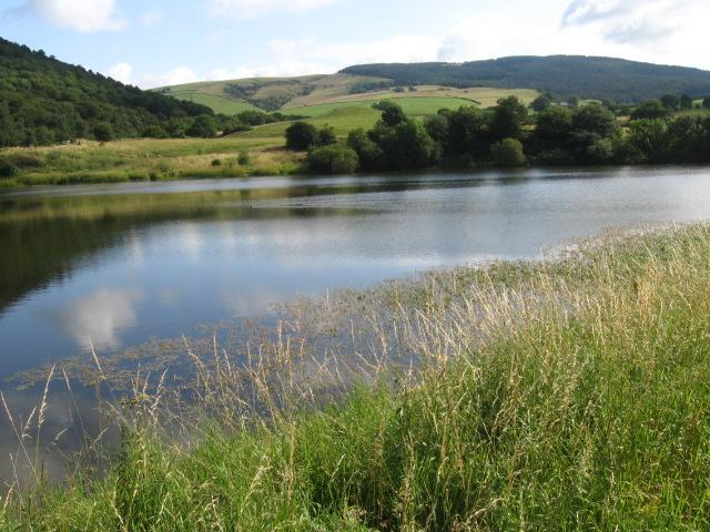 Across Bottoms Reservoir - geograph.org.uk - 1413780
