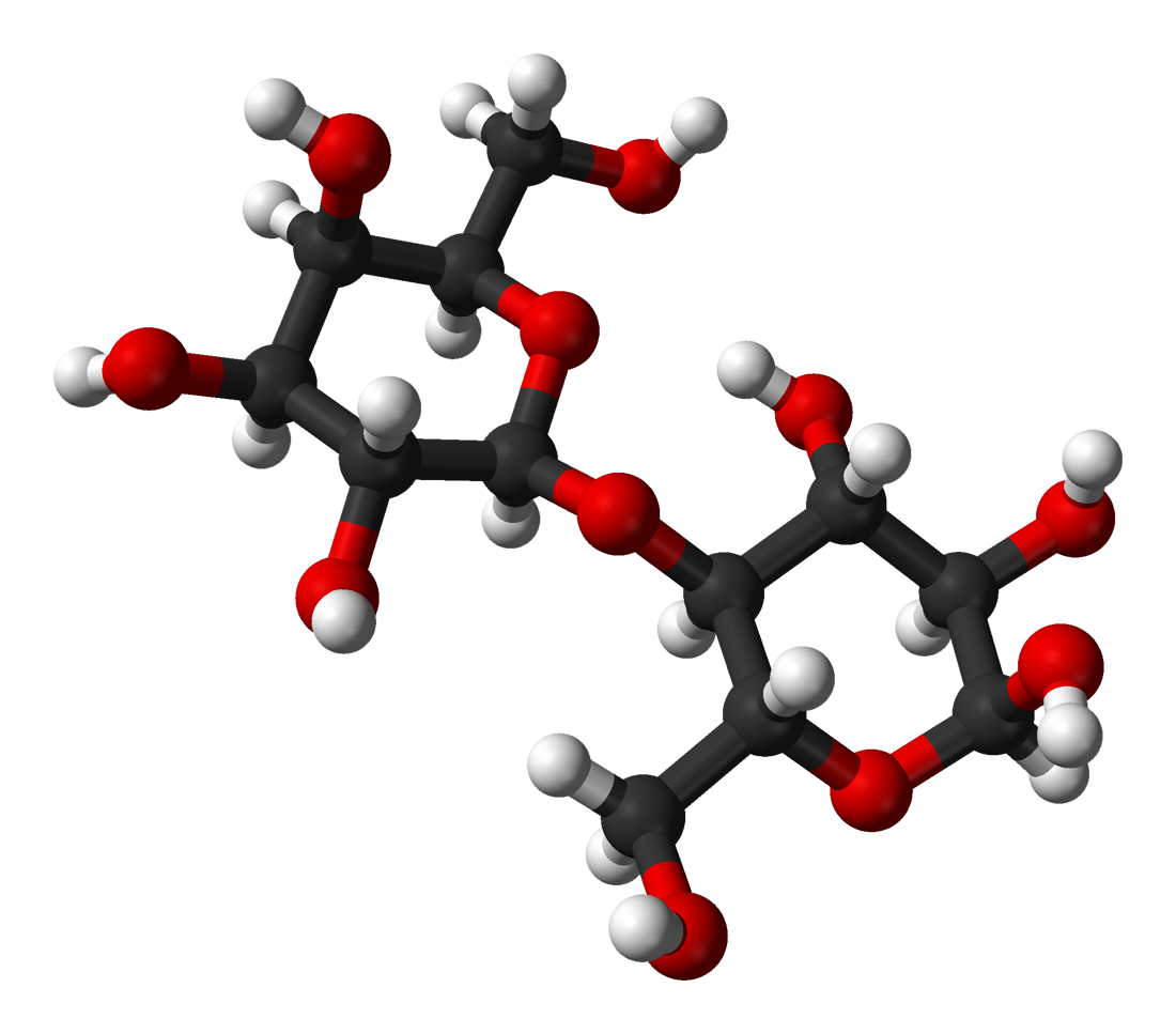 File:Alpha-lactose-from-xtal-3D-balls.png - Wikimedia Commons