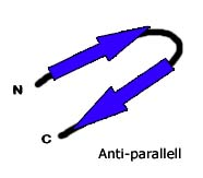 Antiparallell