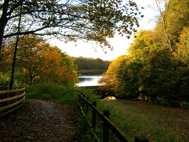 Autumn Splendour - geograph.org.uk - 619887