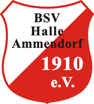 Bsv Halle Ammendorf