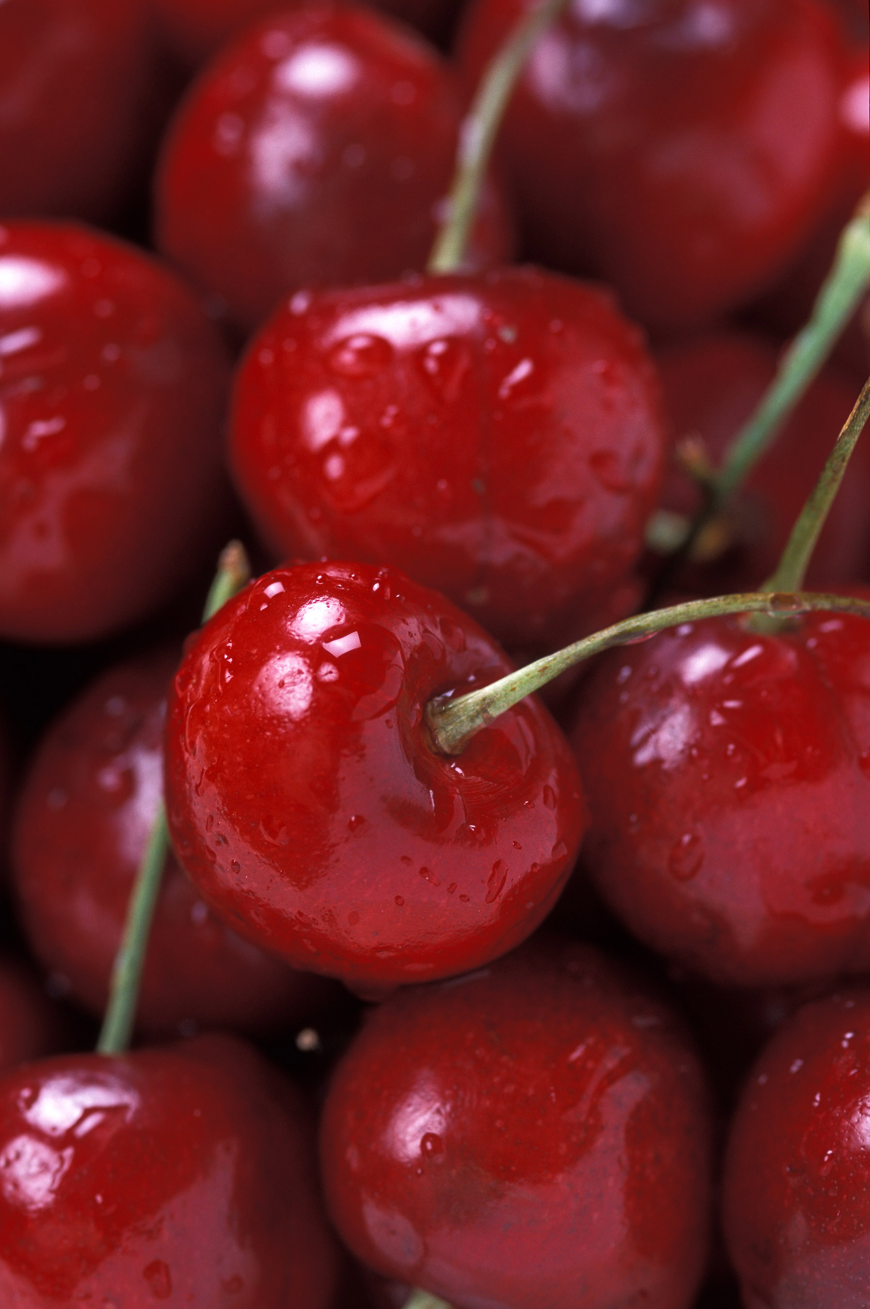 Bing Cherries %28USDA ARS%29 Le nom des fruits en anglais   The names of the fruits in English