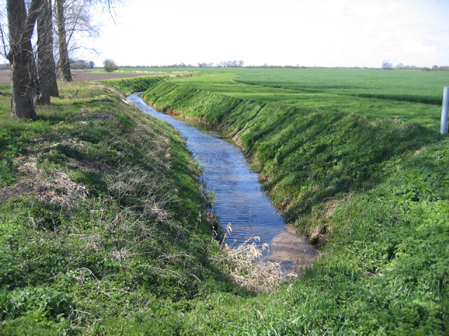 File:Cat's Water Drain.jpg - Wikimedia Commons
