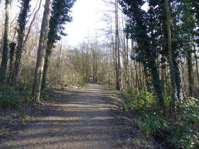 Crowborough Country Park (10)